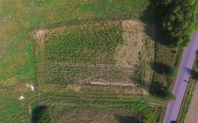Działka rolna Józefowo