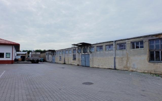 Lokal 800 m2 Mogilno